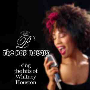 Album The Hits Of Whitney Houston from The Pop Royals