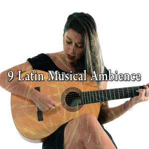 Album 9 Latin Musical Ambience from Spanish Guitar Chill Out