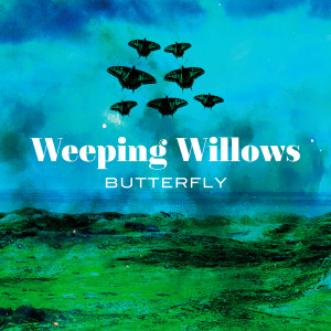 Album Butterfly from Weeping Willows
