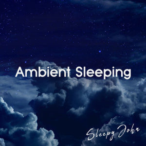 Album Ambient Sleeping from Sleepy John
