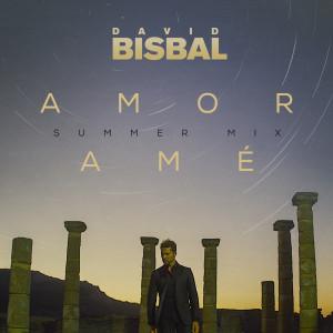 David Bisbal的專輯Amor Amé