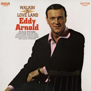 Eddy Arnold的專輯Walkin' In Love Land
