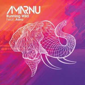 Album Running Wild (feat. Aero) from Amarnu