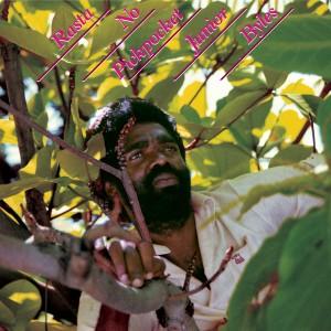 Album Rasta No Pickpocket from Junior Byles