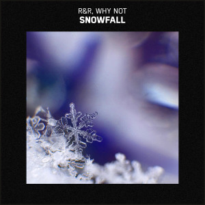 Album Snowfall from Whynot