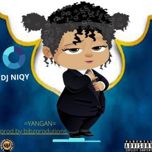 Album YanGan (Explicit) from Dj NiQy
