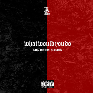 Album What Would You Do (feat. Amazin) from Amazin
