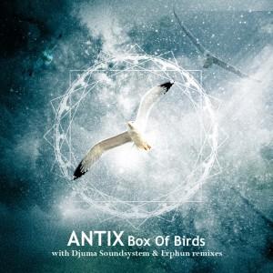 Album Box of Birds from Antix