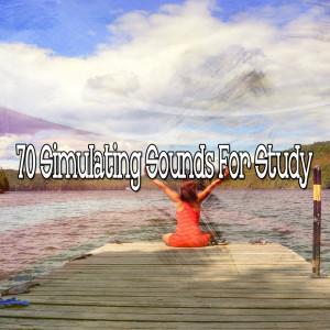 Meditation的專輯70 Simulating Sounds for Study