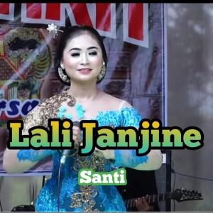 Album Lali Janjine from Santi