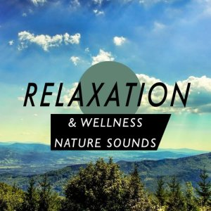 Relaxation & Wellness: Nature Sounds