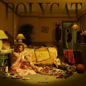 อัลบัม เจ้าหนู ศิลปิน POLYCAT
