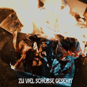 Album Zu viel Scheisse gesehn' from Big K