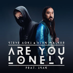 收聽Steve Aoki的Are You Lonely歌詞歌曲