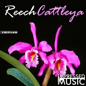 Album Cattleya from Reech