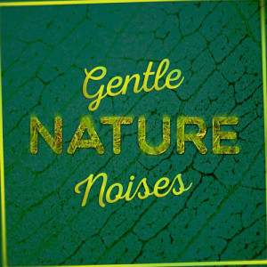 Album Gentle Nature Noises from Outside Broadcast Recordings
