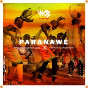 Album Paranawe from Rayvanny