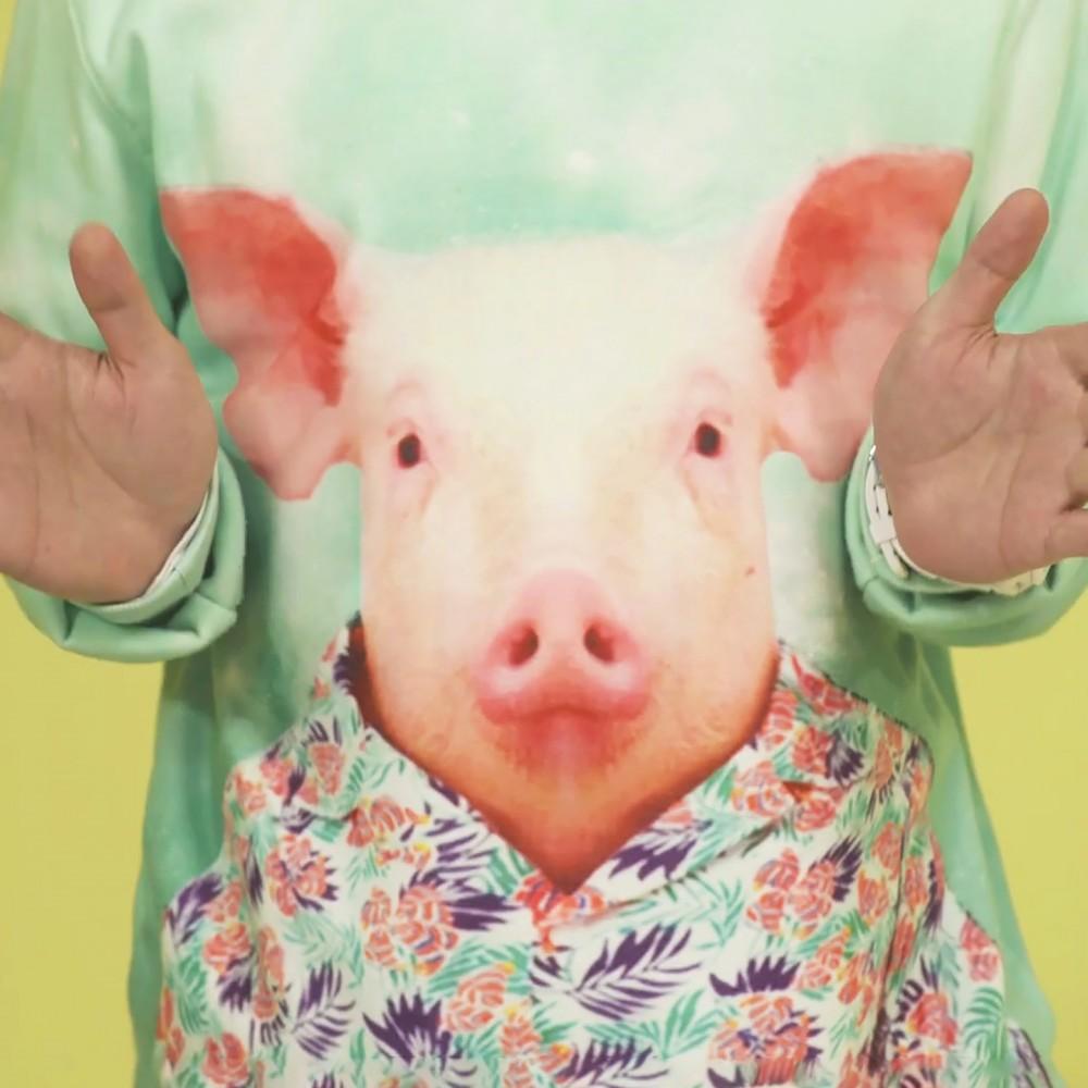 Piggy Piggy