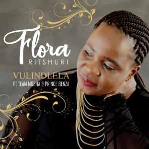 Album Vulindlela from Team Mosha