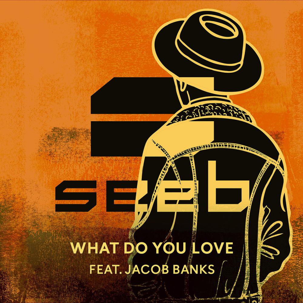 What Do You Love 2016 Seeb; Jacob Banks