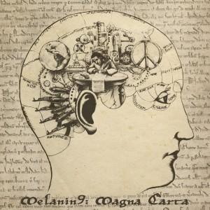 Album Magna Carta from Melanin 9