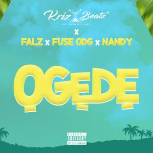 Album Ogede from Fuse ODG