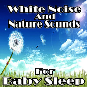Album White Noise and Nature Sounds for Baby Sleep from White Noise Babies