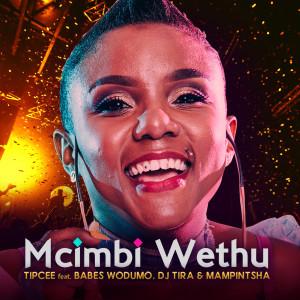 Album Umcimbi Wethu from Babes Wodumo
