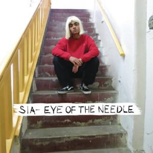 Sia的專輯Eye of the Needle