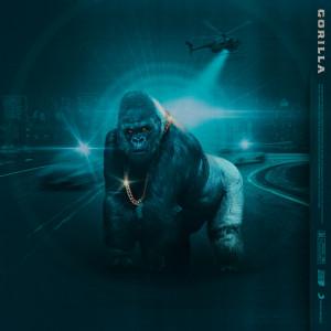 Album Gorilla from LayLay