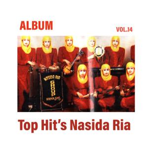 Top Hit's, Vol. 14
