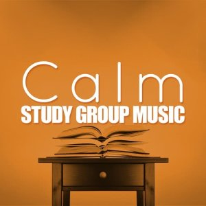 Studying Music Group的專輯Calm Study Group Music