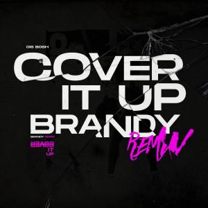 Brandy的專輯Cover It up (Remix)
