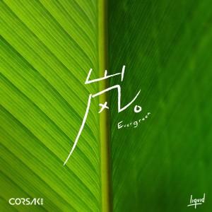 收聽CORSAK的嵐 Evergreen歌詞歌曲