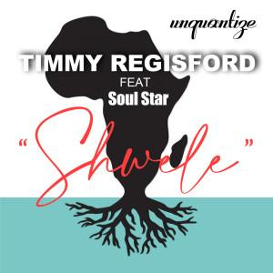 Album Shwele from Timmy Regisford