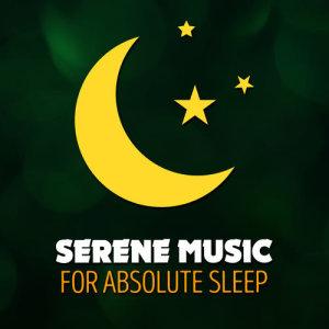 Album Serene Music for Absolute Sleep from Music For Absolute Sleep