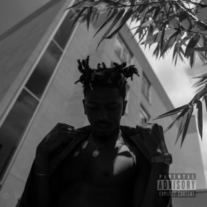 Album The Silver Tape (Explicit) from Loso D. Nice