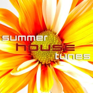 Album Summer House Tunes from Various Artists