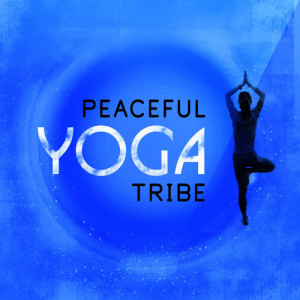 收聽Yoga Tribe的Apollo歌詞歌曲