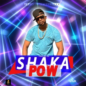 Album Turn Me On from Shaka Pow