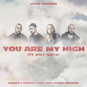 You Are My High (Ty moy kayf) (Latin Version) dari French Montana