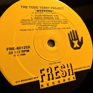 Album Weekend: 1995 Remixes from The Todd Terry Project