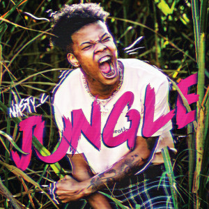 Listen to Jungle song with lyrics from Nasty C