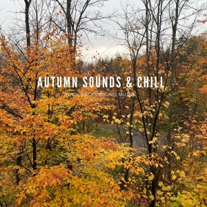 Album Autumn Sounds & Chill from Meditation Music