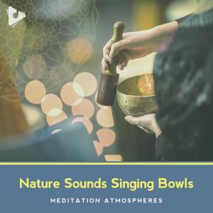 Relaxing Tibetan Singing Bowls的專輯Nature Sounds Singing Bowls