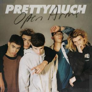 Listen to Open Arms song with lyrics from PRETTYMUCH