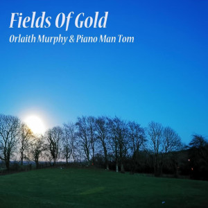 Piano Man Tom的專輯Fields of Gold