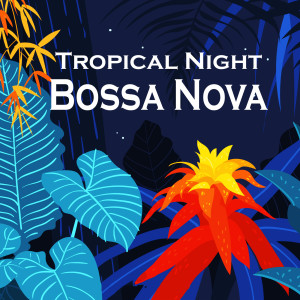 Album Tropical Night Bossa Nova from Lounge Music Channel