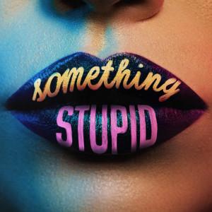 Jonas Blue的專輯Something Stupid