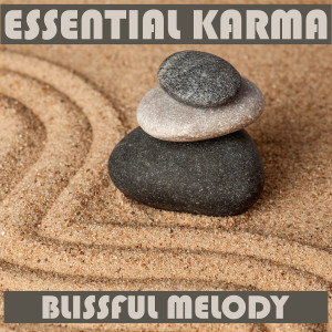 Album Blissful Melody from Essential Band